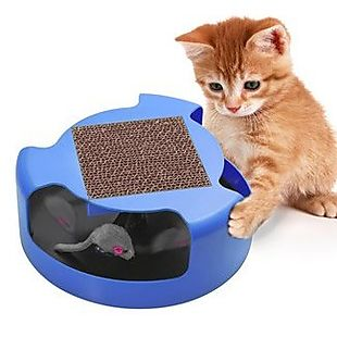 Cat Toy and Scratcher $10 Shipped